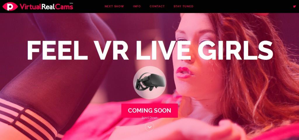 virtualrealcams.com