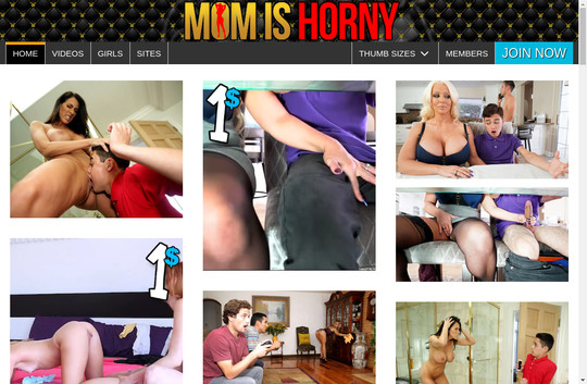 Mom Is Horny